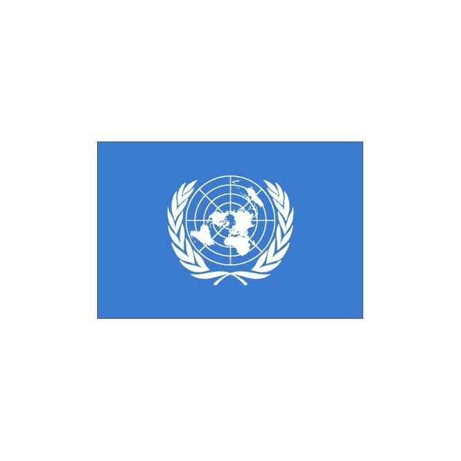 Union Jack Wear United Nations Flag 5' x 3'