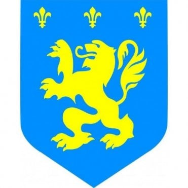 Blue and Yellow Dragon Window Cutout - Tour De Yorkshire
