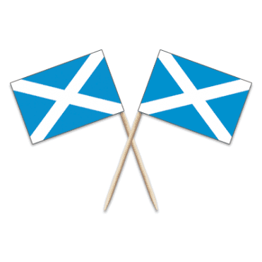 Scotland St Andrews Flag Party picks - pack of 100