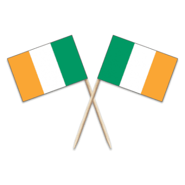 Ireland Flag Party picks - pack of 100