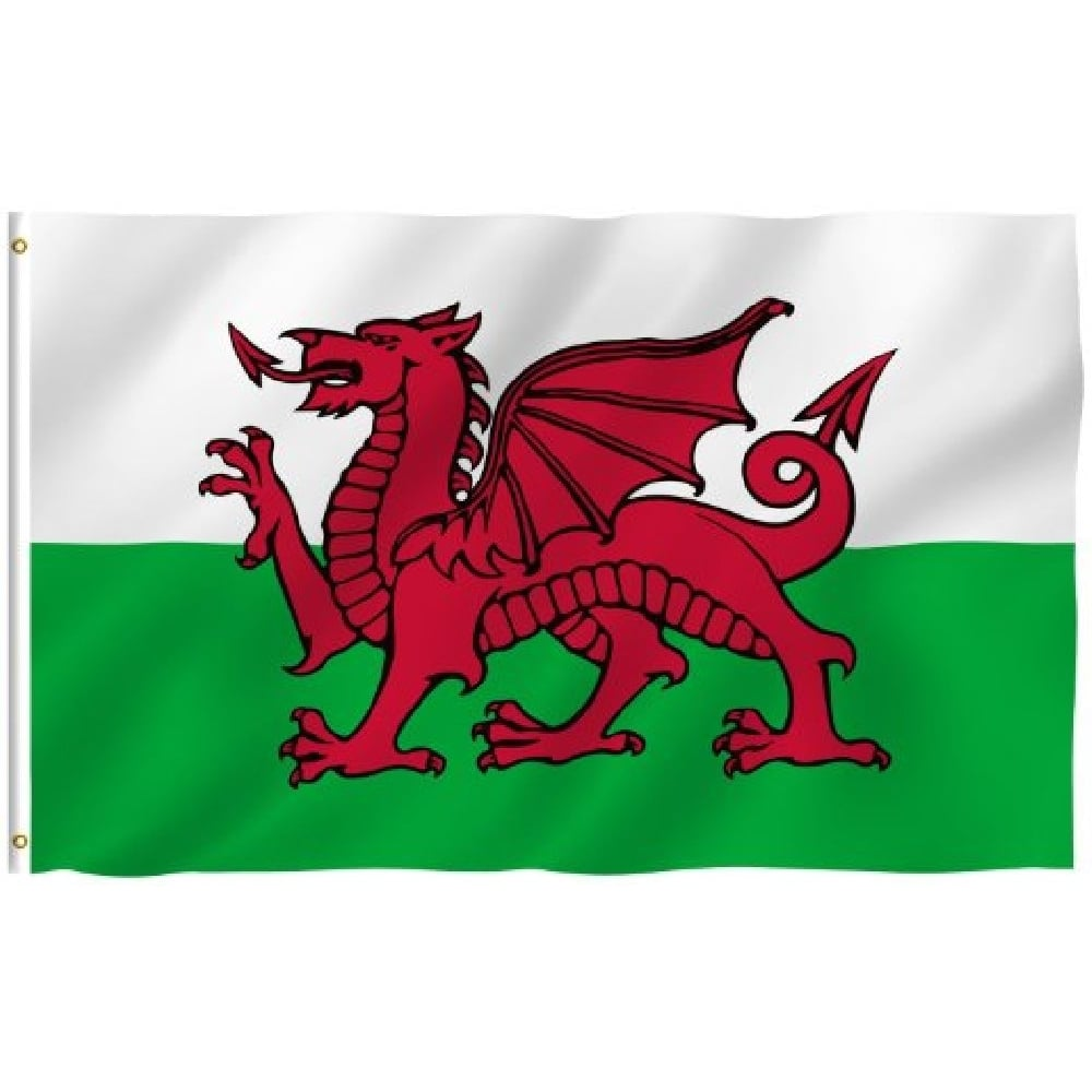 Wales Red Dragon Value Flag Pole Kit Euro 2016